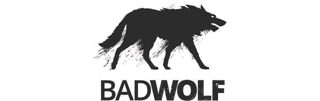 movement-directing-and-coaching-client-BadWolf